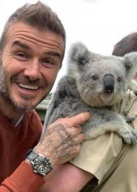 David Beckham v Symbio Wildlife parku
